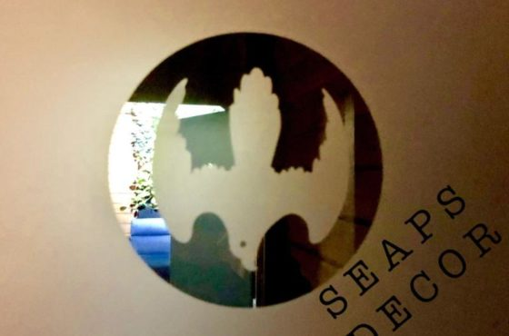 Стеклянные интерьерные межкомнатные двери в частном доме